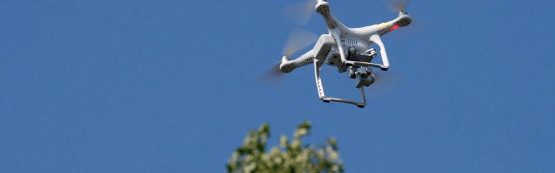 Drohne_vor_Pappel